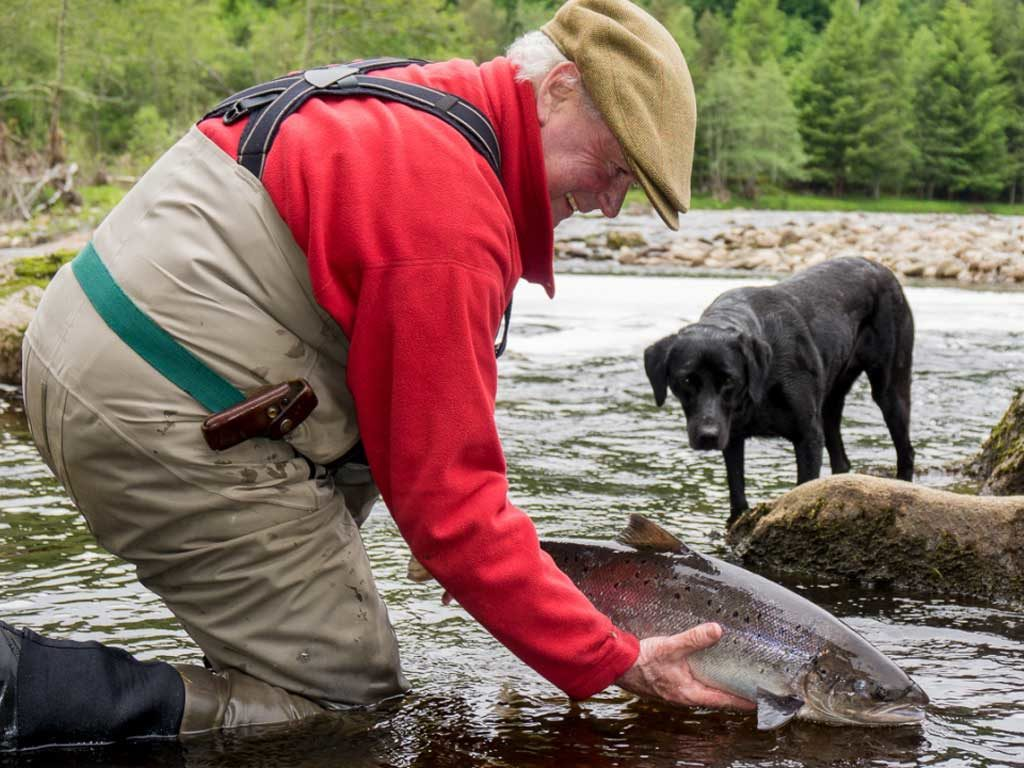 Guided Salmon Fishing In Moray - Ian catches a Salmon