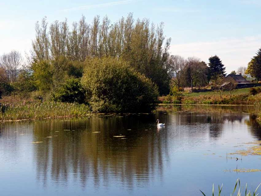 Carden Holiday Cottages Pond